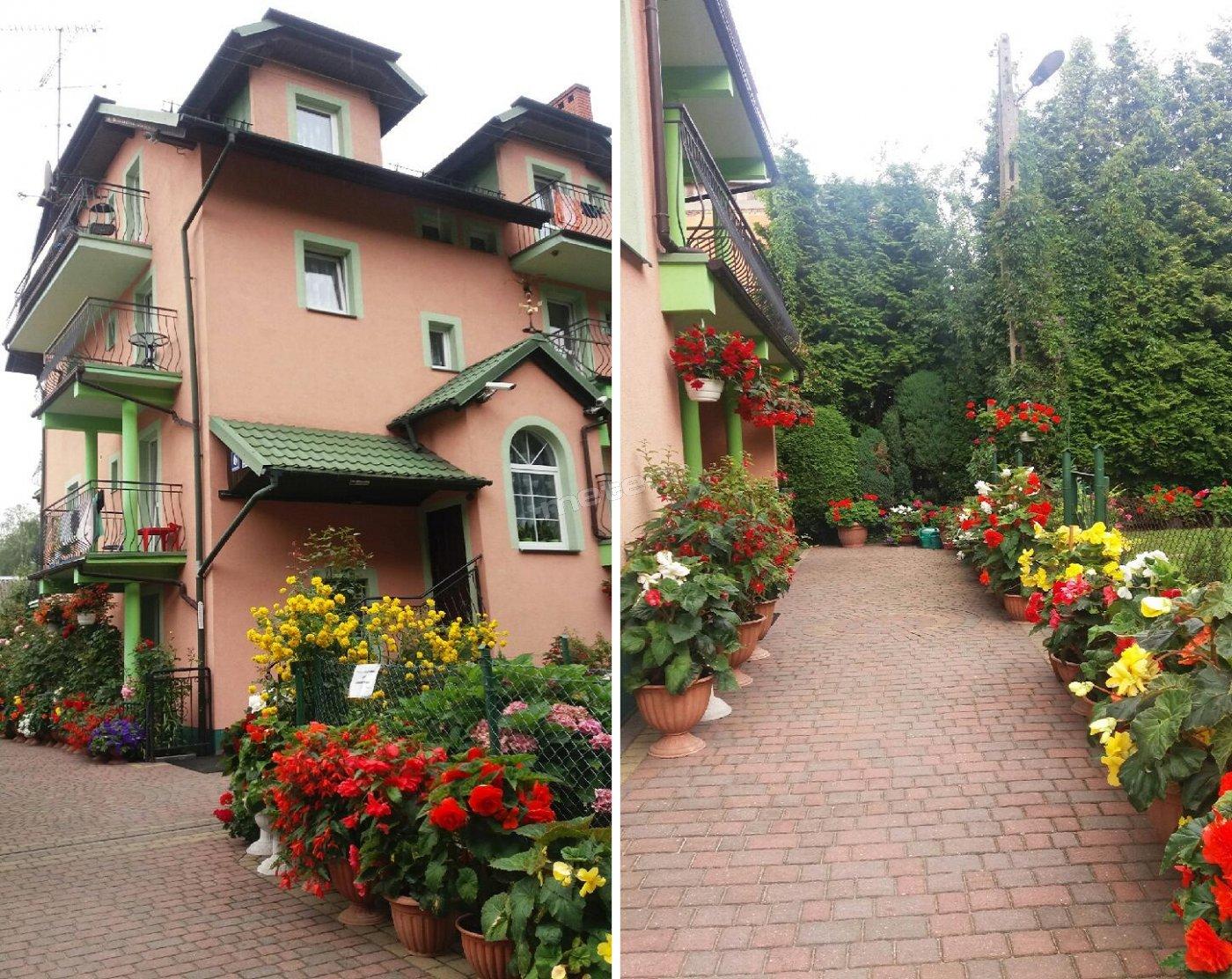 Dom Gościnny Alga - Kwatery Prywatne