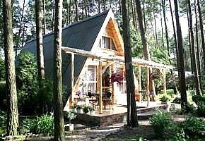 Ośrodek Wypoczynkowy Leśna Chata