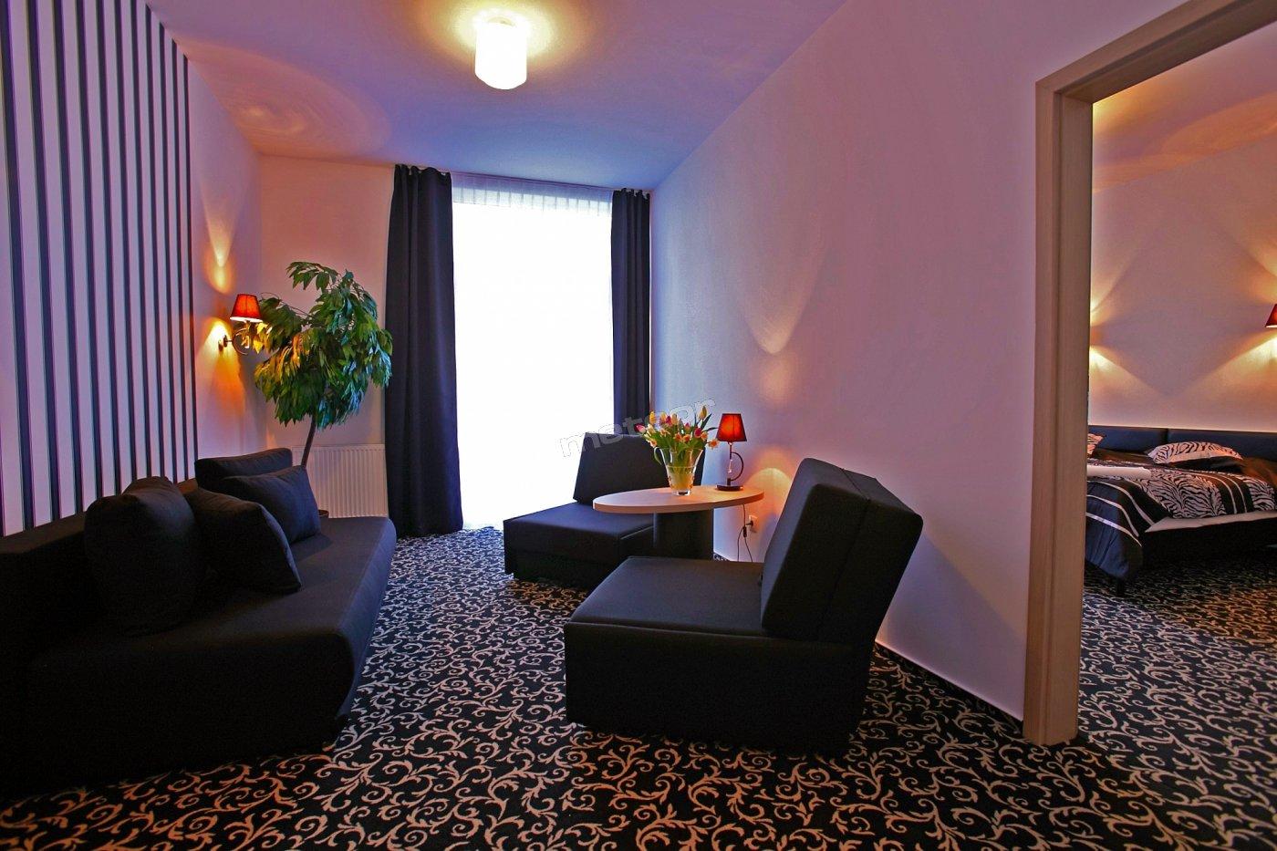 Apartament- pokój dzienny -250 zł ze śniadaniem