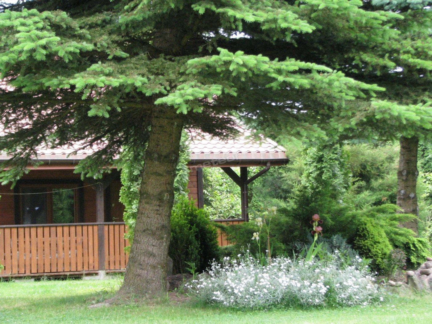 uroczy drewniany domek z kominkiem