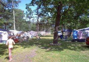 Domki i Camping nr 142 Wiśniowa Polana