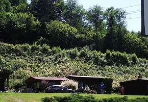Agroturystyka OAZA