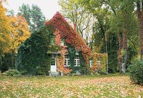 Ośrodek Konferencyjno-Wypoczynkowy Lipnik Park