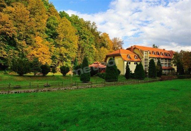 Hotel & Restauracja Złoty Las / Góry Sowie