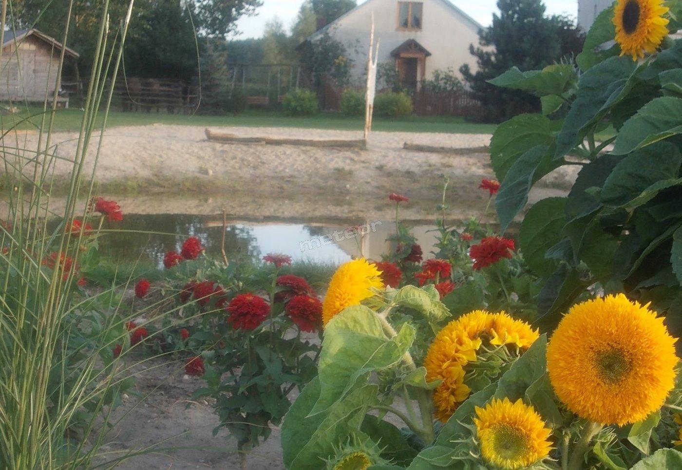 Widok od strony ogrodu