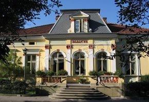 Pensjonat - Restauracja Pałacyk