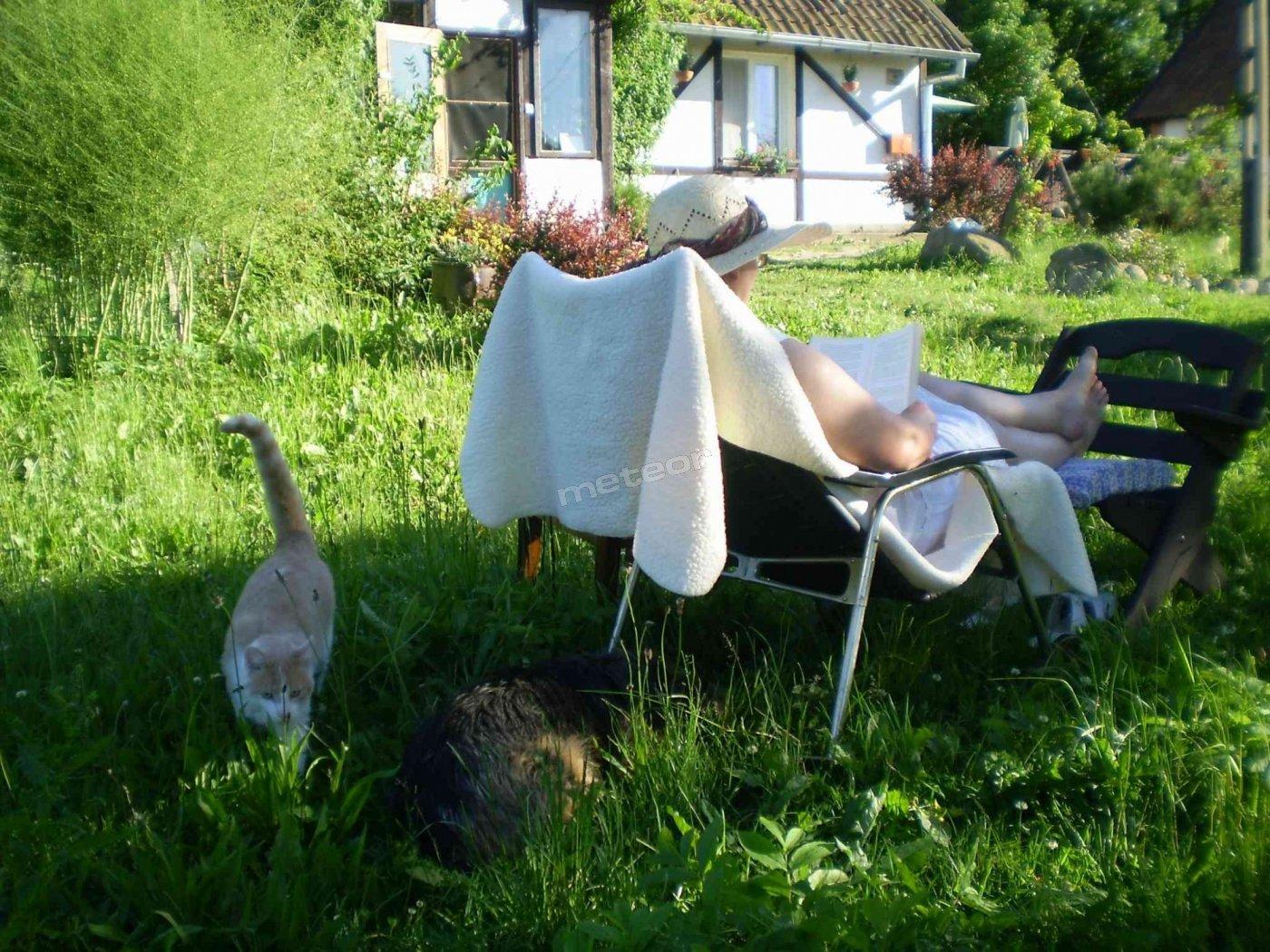 Cisza, spokój, relaks w Agroturystyce Ostrów Kierwiński
