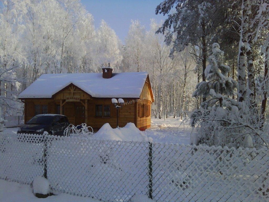 w zimie