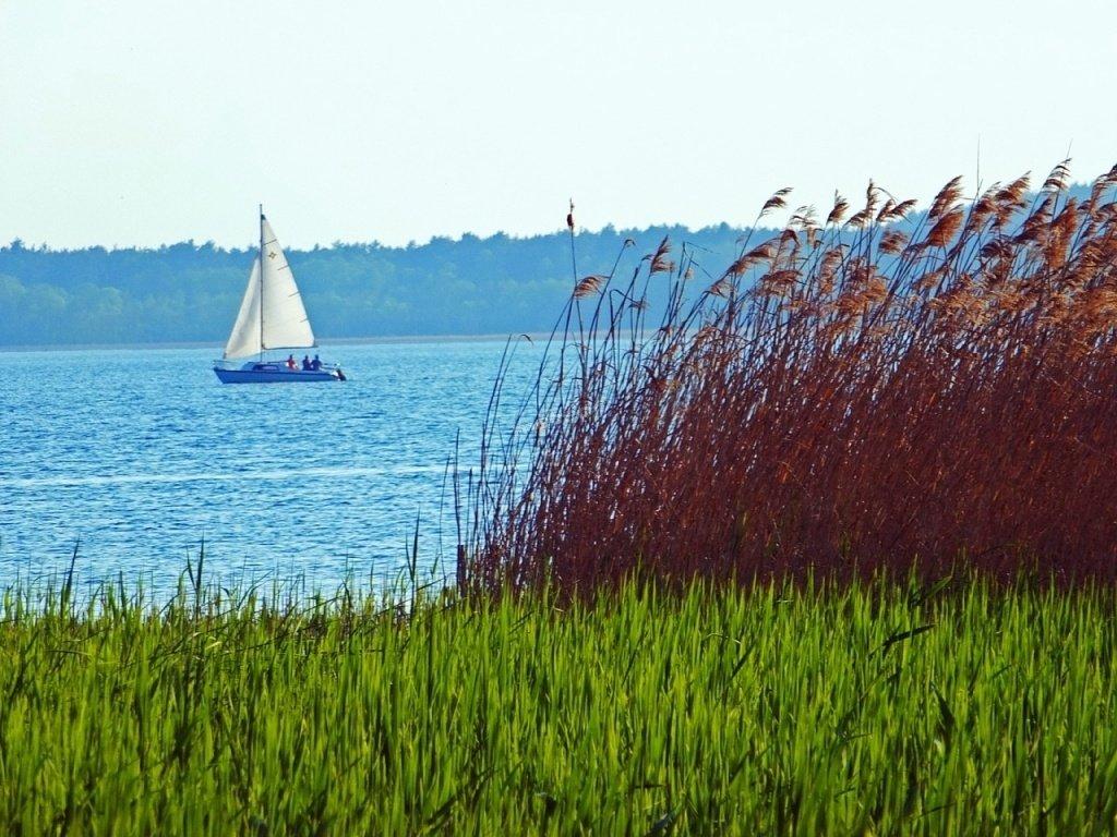 Jezioro Dominickie