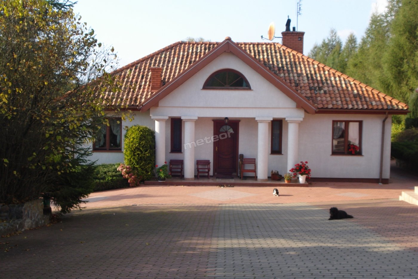 Rancho Modrzew