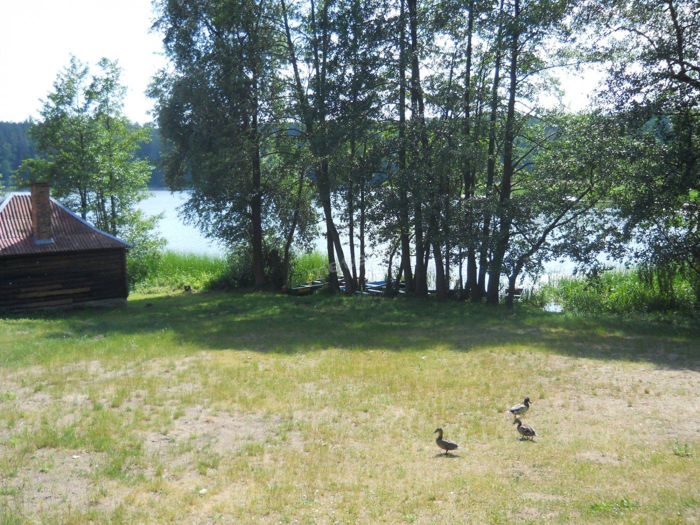 wypoczynek pośród lasów jezior i ptaków