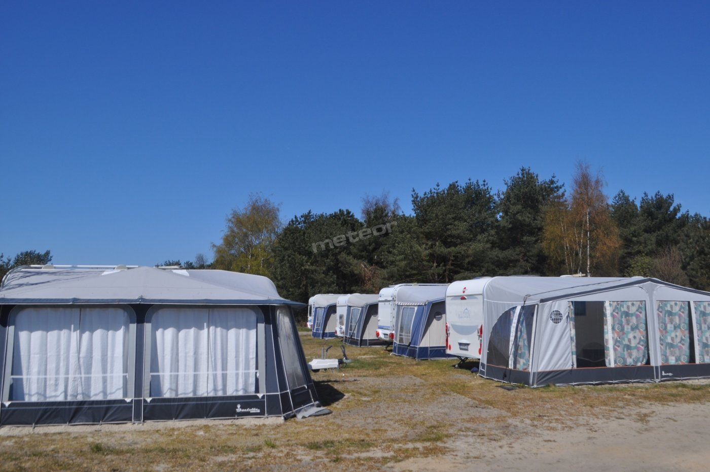 Royal Camp