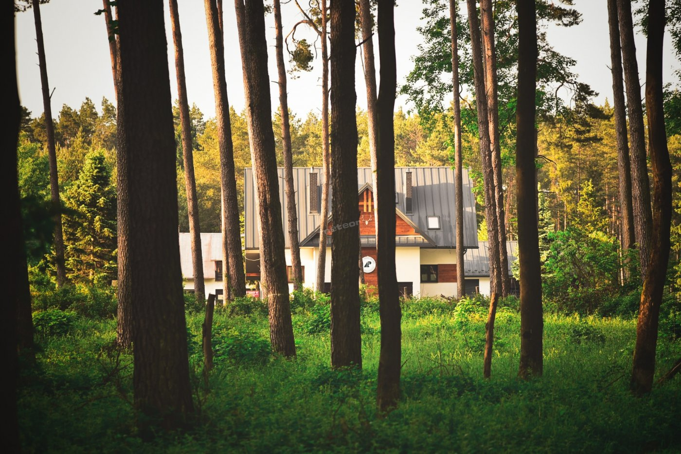 Kwatera położona jest przy granicy lasu