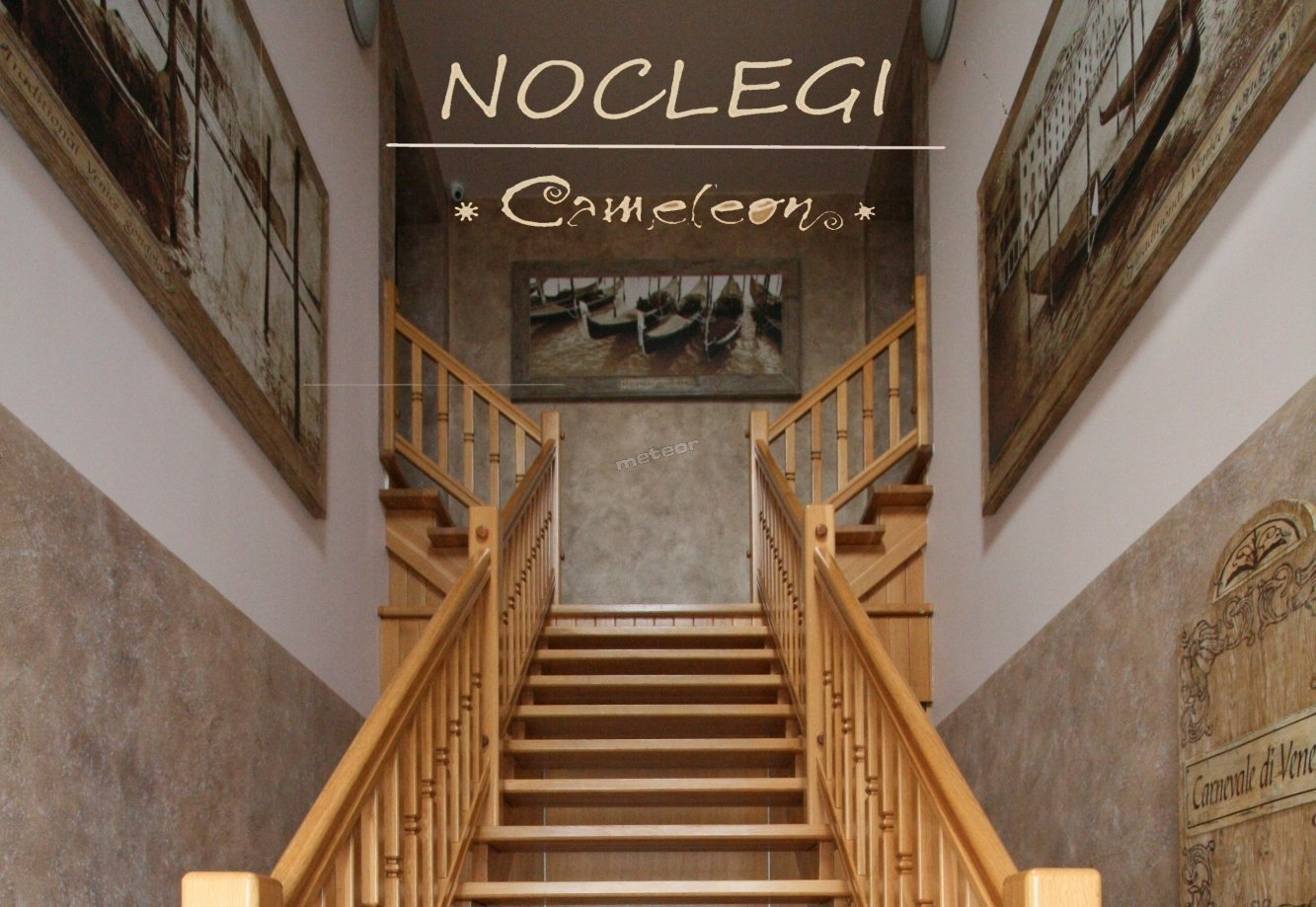 Noclegi Cameleon