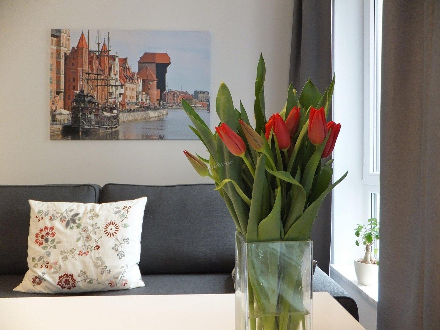 Przytulny Apartament w Gdańsku na Starym Mieście