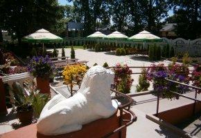 Guest Rooms - Restaurant Savana