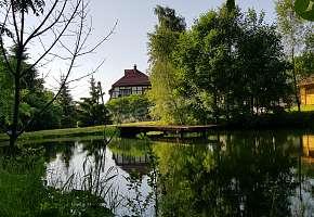 Austeria Krokus
